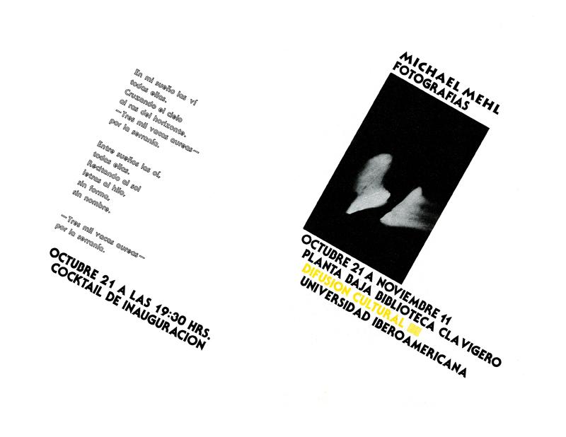 1979_Michael-Mehl_Vacas-Aureas-Exhibit_Ibero